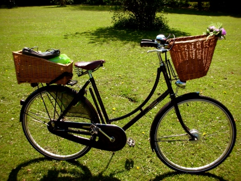 Pashley as pretty as a picture! (I know, I am bias!)