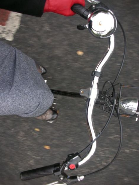 bike panda